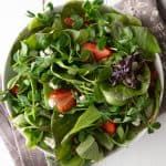Bowl of green salad and micro greens