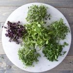 6 piles of micro greens on a white plate