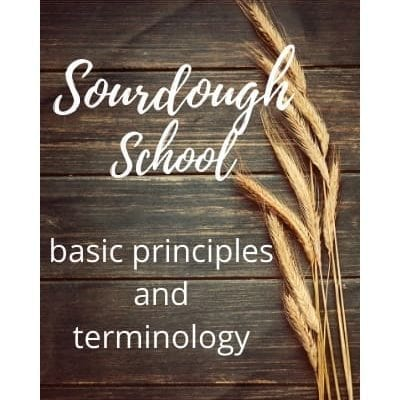 Sourdough Basic Principles and Terminology