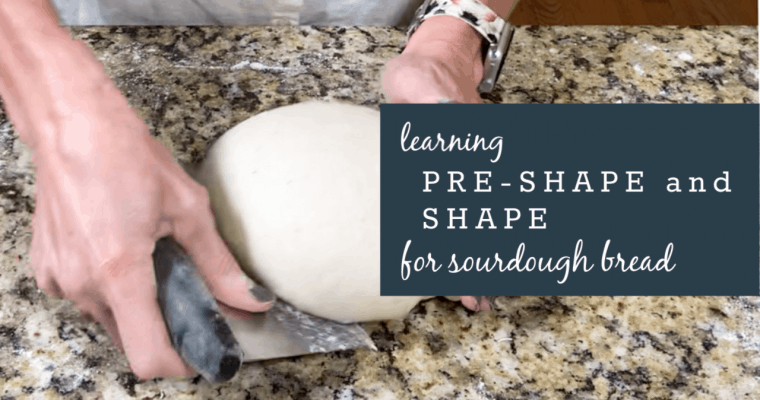 Technique: Learning Pre-Shape and Shape for Sourdough Bread & also Proofing!