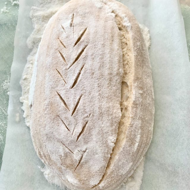 a loaf of raw sourdough bread, shaped with a cut score pattern on the right slashed from pole to pole, and a wheat pattern cut into the left side